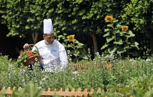 Weekly Cooking Classes at Movenpick Resort & Spa Tala Bay Aqaba Start with Organic Harvesting
