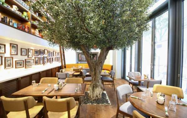 From LA to Dubai: Urth Caffe Brings a New Generation of Organic Well-being to City Walk