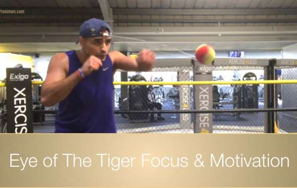 Eye of The Tiger Focus & Motivation