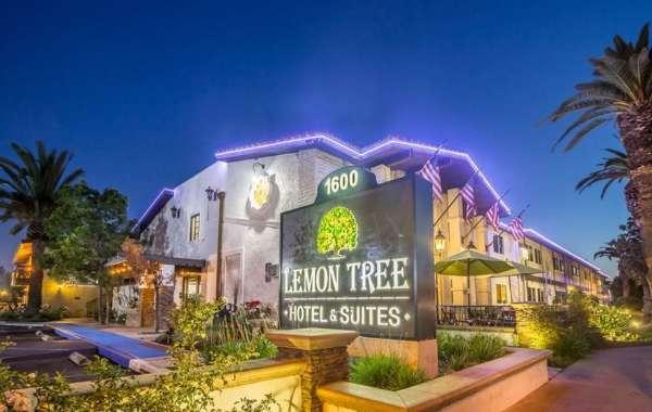 Lemon Tree Hotels to Enter Upscale Hotel Segment