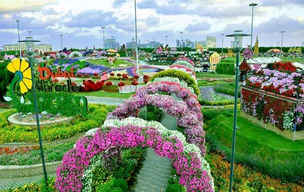 Blooming in its Eighth Edition, Dubai Miracle Garden Offers Bunch of New Attractions