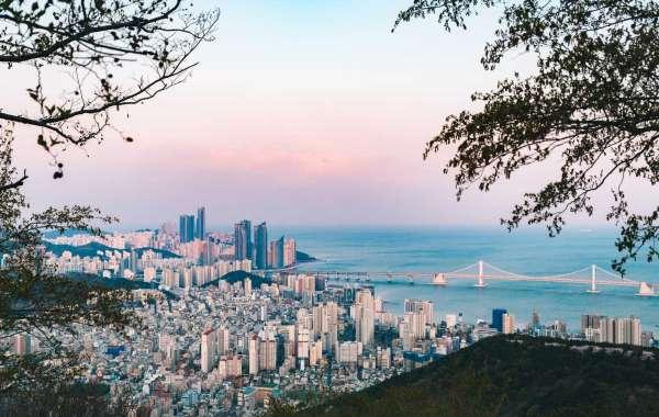 AvaniMe Resident Undercover Report of Busan's Best Kept Secrets