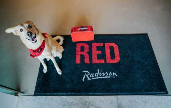 Radisson RED Launches Pawsome Staycation