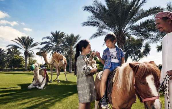 An All-Inclusive Magic Eleven Escape with Bab Al Shams Desert Resort